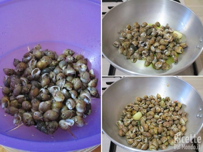 Cuocere le lumache di mare