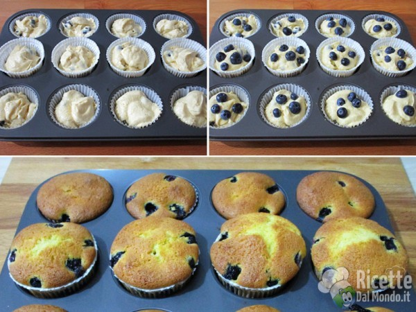 Blueberry muffin 5