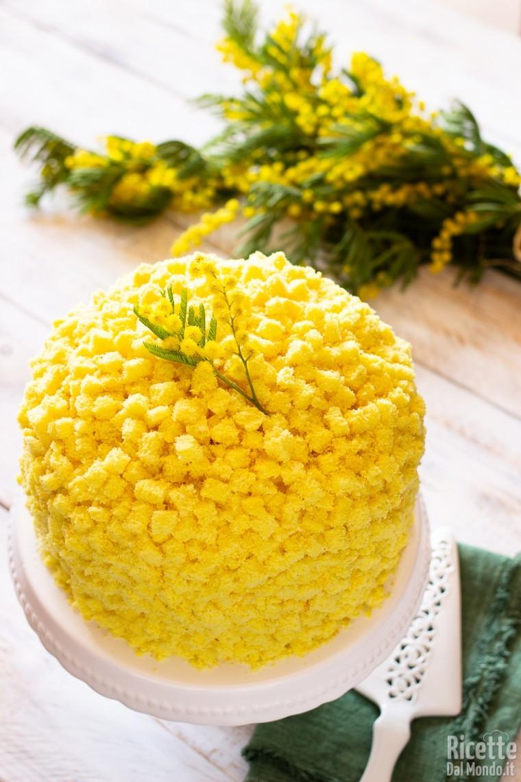 Torta mimosa 14