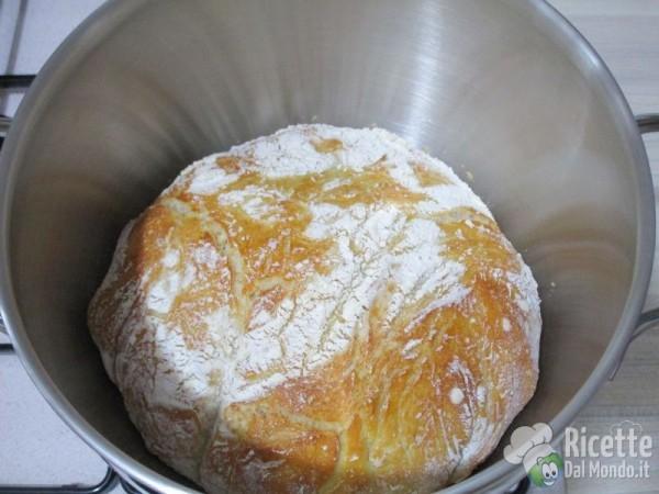 Pane senza impasto - no knead bread 13