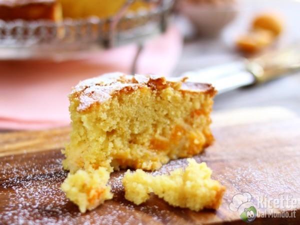 Semplice torta di albicocche