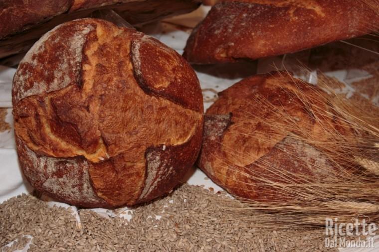 10 tipi di pane: pane di Altamura
