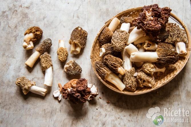 10 varietà di funghi: le morchelle o spugne