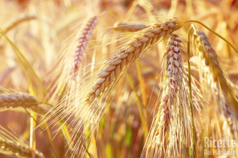Come usare la farina di farro: come sceglierla e conservarla