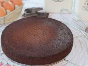 Ricetta Pan di Spagna al Cioccolato