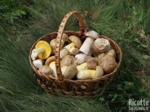 Ricetta Come conservare i Funghi