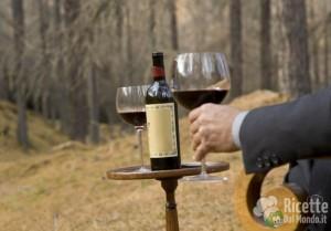 La perfetta degustazione del vino: regole da seguire ed errori da evitare