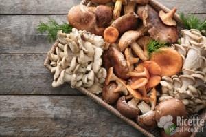 Ricetta 10 varietà di funghi
