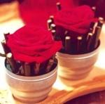 Ricetta Piccoli Vasi di Rose